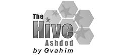 The Hive Ashdod
